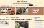 CatsTheBoss.com